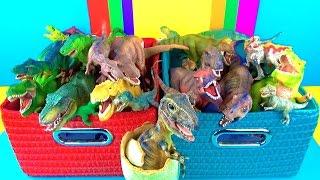 Dinosaur Box | T rex Toy Collection | Tyrannosaurus Kids Toys | 3D Puzzle Surprise Egg