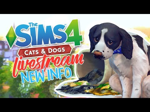 THE SIMS 4 CATS & DOGS | NEW INFO - PREGNANCY, LIFESPAN, BREEDS + MORE