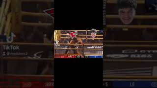 Jarvis knockout