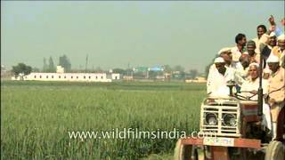 Fun and exciting tractor riding in Uttar Pradesh