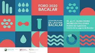 M. en C. Alma Dora Morelos Villegas . Asesor Ambiental APIQROO . Foro 2020 Agua Clara Bacalar