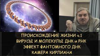н.Левашов: Происхождение жизни часть 1 из 9. ДНК и РНК. Эффект фантомного ДНК. Камера Кирлиана