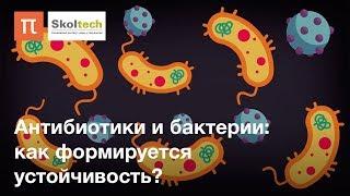Антибиотики и бактерии: как формируется устойчивость
