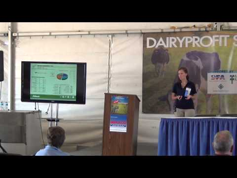 Review of mycotoxins and their impact on dairy cattle production and health