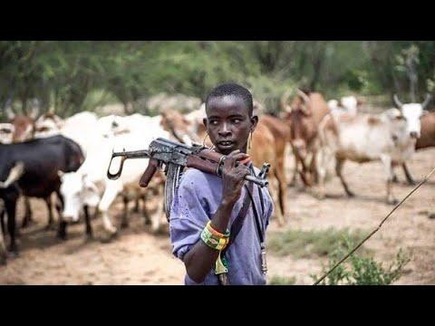 """#Herdsmen Killings: """"Solve the #problem or #resign from public office"""" - Senator Ben Murray-Bruce"""
