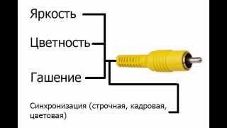Что такое композитный и компонентный разъем (кабель, шнур, вход, выход)