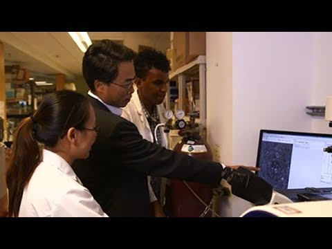 Stanford Center for Arrhythmia Research and Stanford Arrhythmia Service