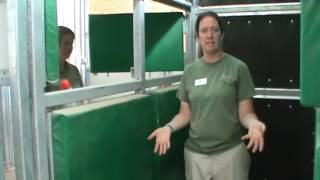 Training a Pregnant Giraffe for a Sonogram