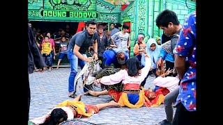 Video KESURUPAN - Penari Cewek Kudalumping Agung Budoyo Balikpapan download MP3, 3GP, MP4, WEBM, AVI, FLV Agustus 2018