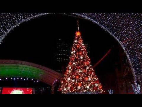araneta center lights up giant christmas tree