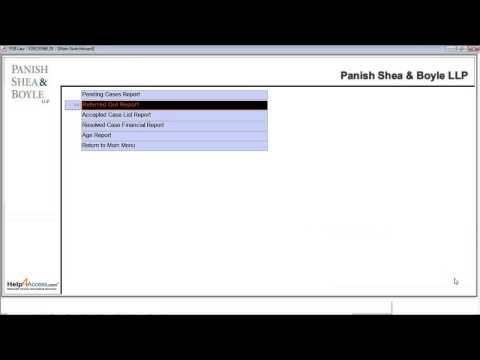 Help4Access (Microsoft Access Database Development) - Demo - PSB Law