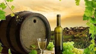 Как делают вино в Грузии #1 / How to make wine in Georgia #1