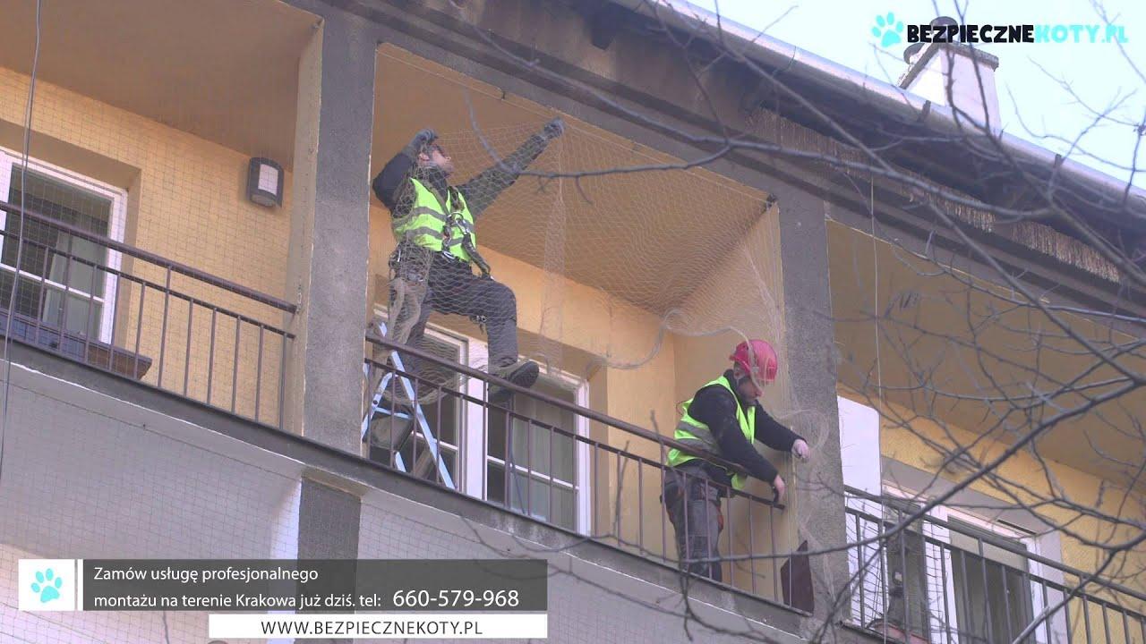 Balkonowa Siatka Dla Kota Montaż Siatek Dla Kota Na Balkon