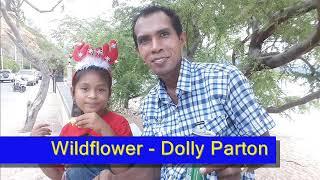 Wildflower - Dolly Parton's Style (Karaoke)
