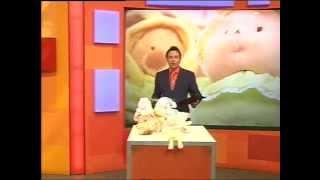 Andy Hodgson sells Ty Beanie Babies on Bid TV