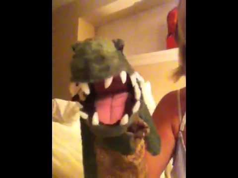 Ally Alligator