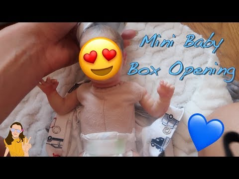 Mini Reborn Baby Box Opening! He's So...