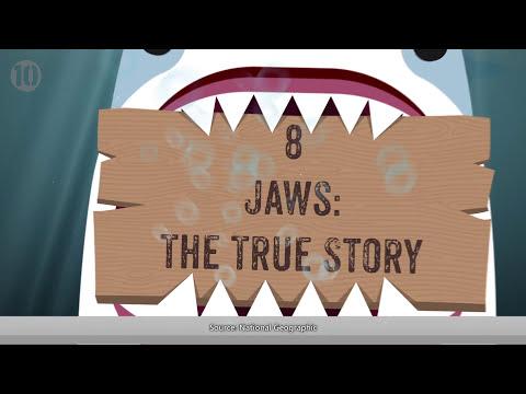 10 Unbelievable Shark Attacks