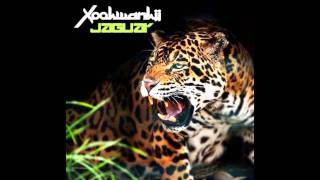 Xookwankii - Jaguar (Xookwankii 11 years radio mix)