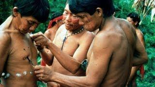 Repeat youtube video AMAZONIA: LAST CALL