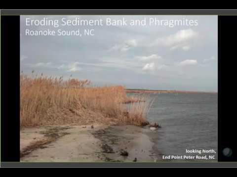 Third Thursday Web Forum: South Atlantic marsh mapping results (4-20-2017)