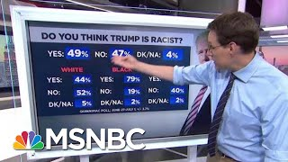 New Poll: 49% Believe President Donald Trump Is Racist | Hardball | MSNBC