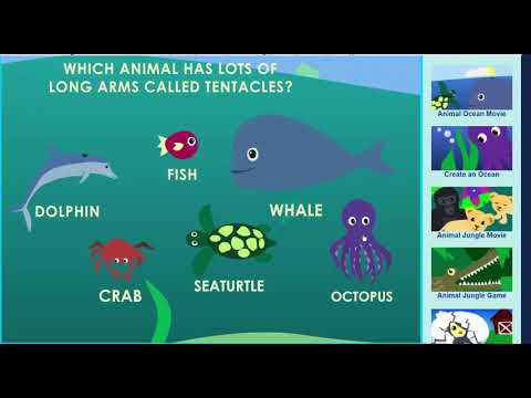 Animal Ocean Game - Learn About Animals In The Ocean! -  Sheppard Software