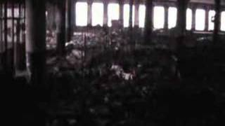 Detroit Wasteland