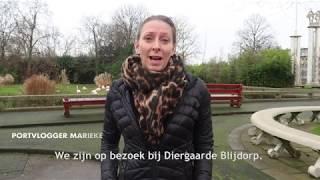 Portvlogger Marieke op bezoek bij Diergaarde Blijdorp Rotterdam