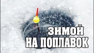 Зимняя Рыбалка Без ПАЛАТКИ и КОМФОРТА!!! Поклевки Леща и Плотвы на ПОПЛАВОК!
