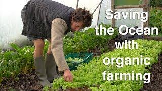 Saving the Ocean #3 Fergal Smith: The positive impact of organic farming