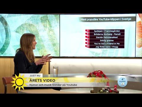 Här är YouTube-klippen som svenskarna älskar - Nyhetsmorgon (TV4)
