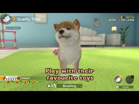 Little Friends: Dogs & Cats - Video