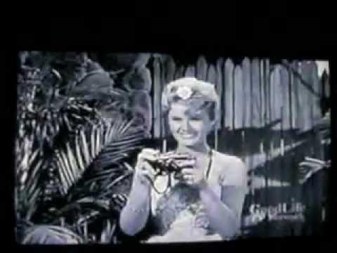 Hawaiian Eye 19591963