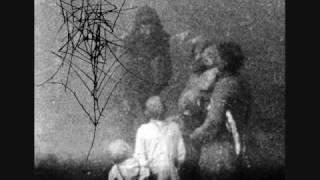 Dead Raven Choir - The Trees They Grow So High