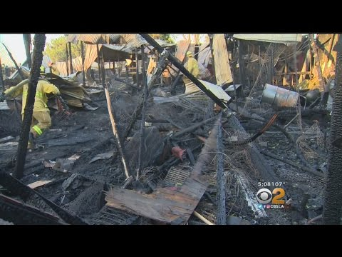 10 horses killed, 22 rescued in Montebello stable fire
