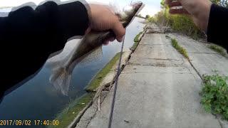 Первая рыбалка этой осени, 2017