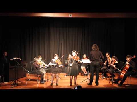 Nefes sanat merkezi vivaldi a minör double violin