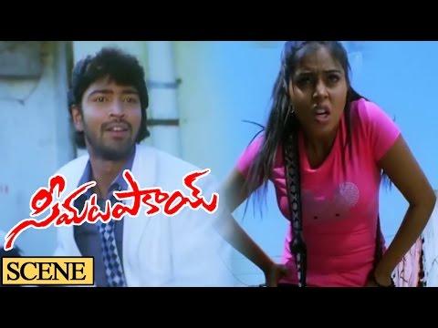 Poorna Introduction Nice Scene || Seema Tapakai Movie || Allari Naresh, Poorna