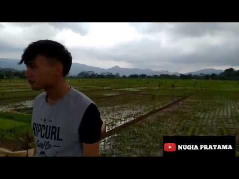 Kemarin-Seventeen | Cover Andy Nugia Pratama