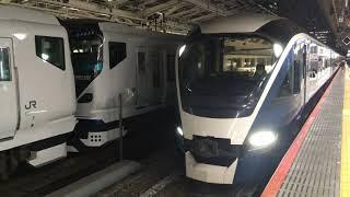 【しょうなん、さふぃーる おどりこ】E257系 特急 湘南、E261系 特急 サフィール踊り子(回送)@東京駅
