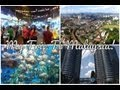 My Trip To Malaysia ♥ Kuala Lumpur, Petronas Towers, & More!