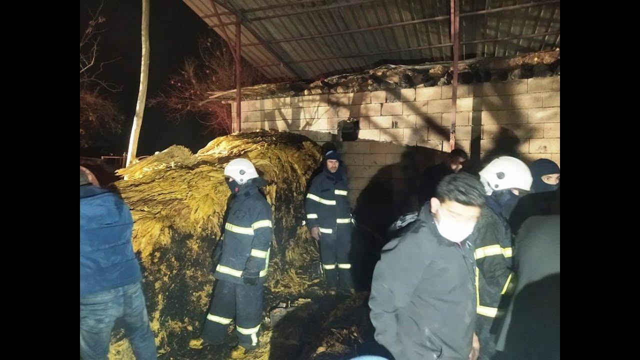 Tütün Deposunda Çıkan Yangında 900 Kilo Tutun Kule Dondu