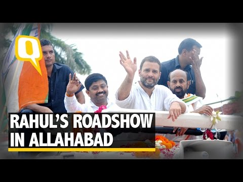The Quint: Huge Turnout at Rahul Gandhi's Roadshow in Allahabad