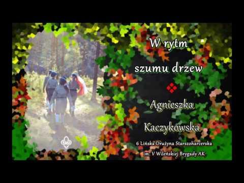 Agnieszka Kaczykowska - W rytm szumu drzew