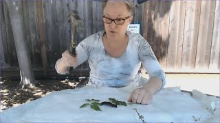 Virtual Family Camp Crafts - Camouflage
