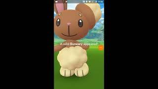 Catching Gen4 Pokémon GO (Bidoof) & more