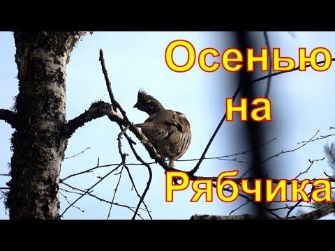Осенняя охота на
