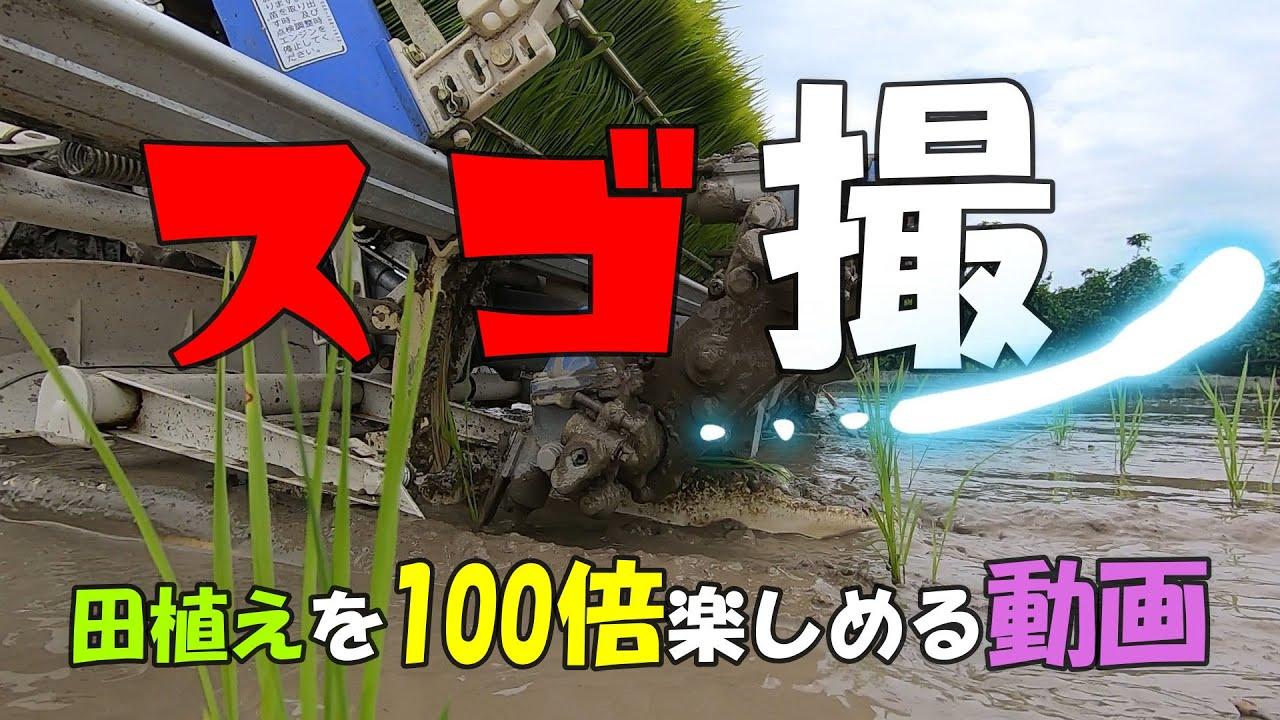 スゴ撮!!田植え作業を100倍楽しめる動画!ワクワクするでぇ~