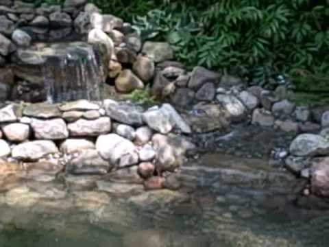 How To Enlarge A Koi Pond Quot A Step By Step Tutorial Quot In